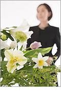 公営斎場での一般葬儀スタンダードデラックスプラン